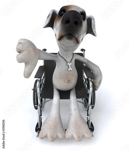 Chien en chaise roulante by julien tromeur royalty free for Basketball en chaise roulante