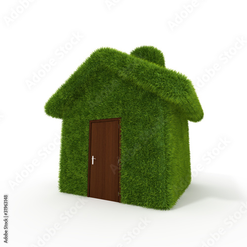 Green grass house