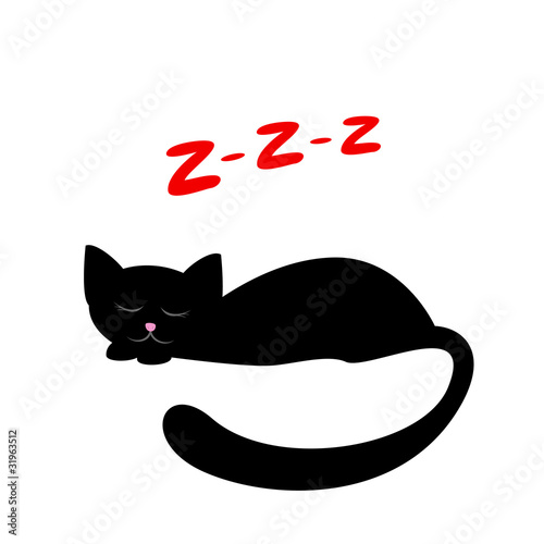 sleeping black cat