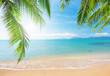 Leinwandbild Motiv Palm and tropical beach