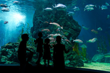 Family with two kids in oceanarium
