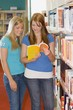Two Young Women In A Library