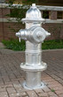 Freshly painted silver fire hydrant