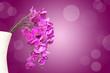 Bouquet d'orchidée, fond violet