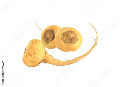 Peruvian Ginseng (Sp. Maca, lat. Lepidium meyenii) - 31990329