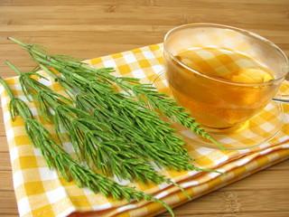 Tee mit Ackerschachtelhalm