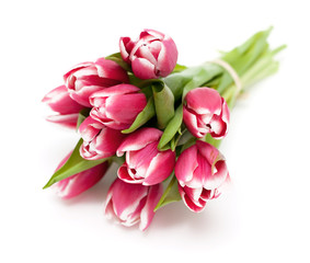 bunch of pink tied tulips
