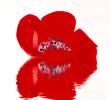 Fototapete Rot - 1 - Blume