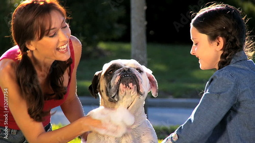 Mom & Daughter Bathing Family Bulldog in Close-up