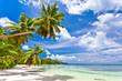 Fototapeten,seychellen,stranden,kokospalme,palme