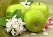 Green apples with flowers