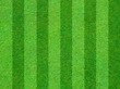 Real green grass field background