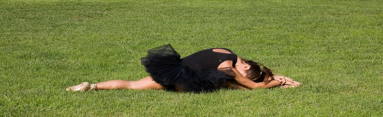 ballerina sul prato