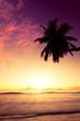 Seychelles couché de soleil