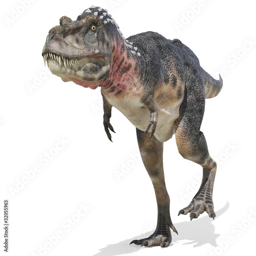 tarbosaurus walking