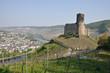 Ruine Landshut bei Bernkastel-Kues