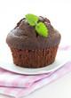 brauner Muffin