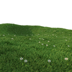 green field white