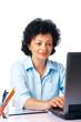 Elder Woman With Laptop.