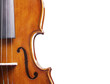 violin close up on white with room for text