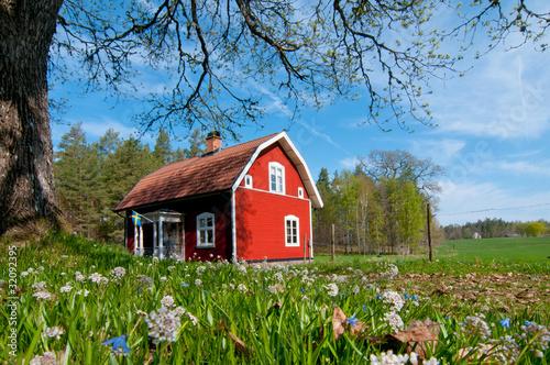 Leinwandbild Motiv Schweden