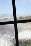 crinkle privacy glass poster