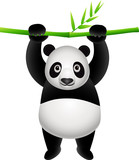 panda hanging on a bamboo