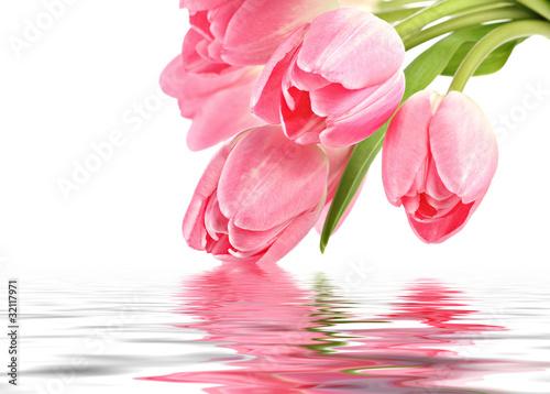 Zdjęcia na płótnie, fototapety na wymiar, obrazy na ścianę : Pink tulips with water reflection and copy space