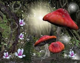 Radura nel mezzo della foresta