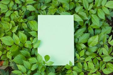 letter[leavesL]_02