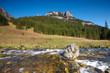 Polish Tatra mountains - Koscieliska valley