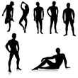 Nude Male silhouettes.Vector