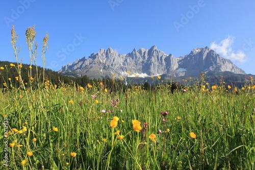 Leinwandbilder,wilder westen,berg,fels,wiese