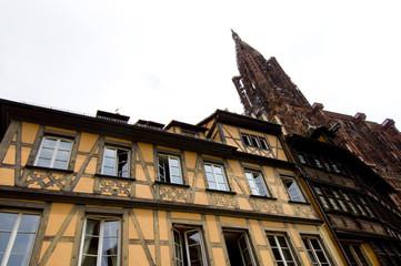 Münster und Kammerzellhaus - Straßburg - Elsass - Frankreich