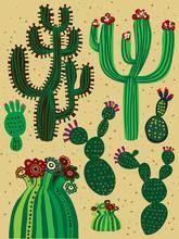 couleur de cactus ensemble