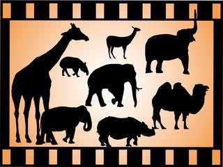 Gruppe afrikanischer Wildtiere