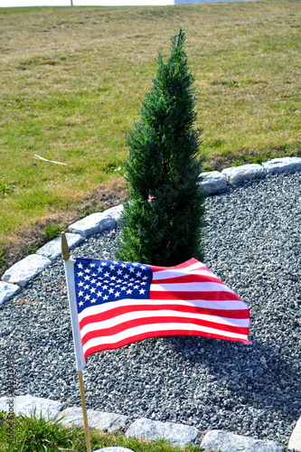 Plant a Tree for an American Soldier