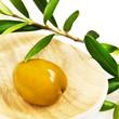 Oliven - Olivenzweig