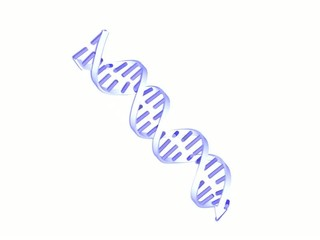 animation of DNA chain turning on white background