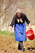 Senior woman farmer sowing