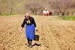 Senior woman farmer sowing