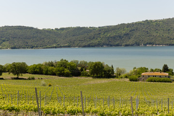 Lago di Corbara, panorama