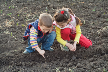 Two little children planting seeds in the field