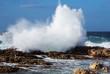 . Sea wave breaking against coast  rock