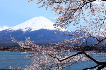 富士山 河口湖にて