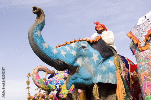 hand painted elephants, Jaipur, Rajasthan,India