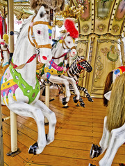 cavalli da giostra