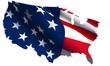 USA flag - USA map VECTOR