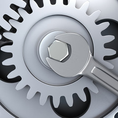 Gear wheels and wrench - fixing