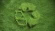recycling symbol growing in grass